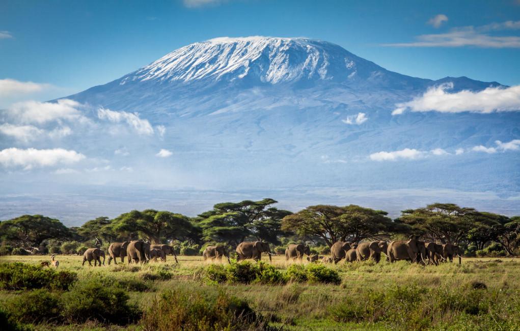 Kilimanjaro 5895m KIL